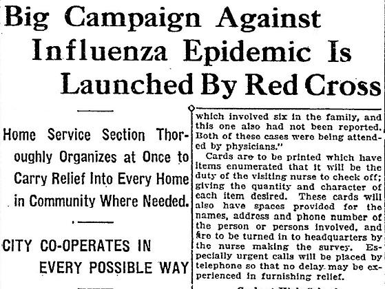 InfluenzaCPDF#2 Idaho_Statesman_published_as_The_Idaho_Daily_Statesman___January_2_1919.jpg