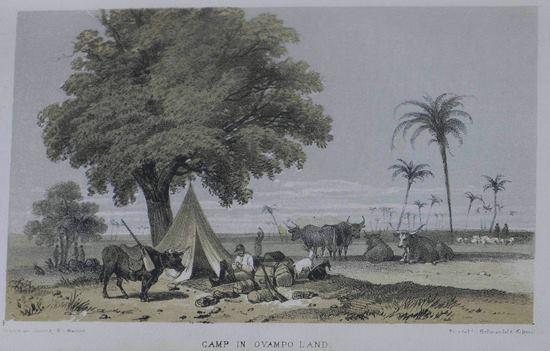 Galton Camp.jpg