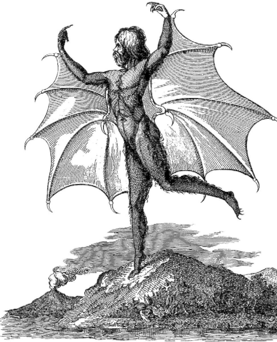 Vespertilio-homo, or man-bat.png